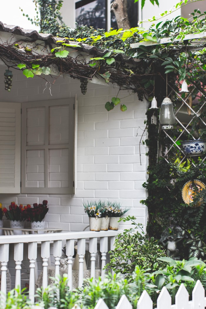 quaint house with plants, ivy, and chimes