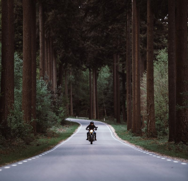 motorcycling on a road through a forest