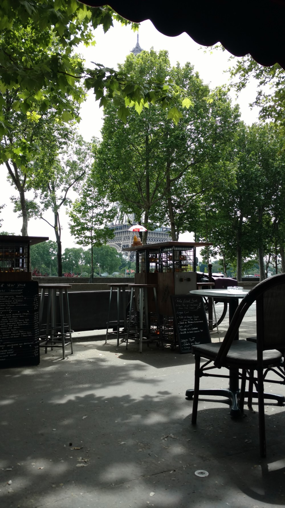 View from the New York Cafe in Paris of the Eiffel Tower, obstructed by a tree