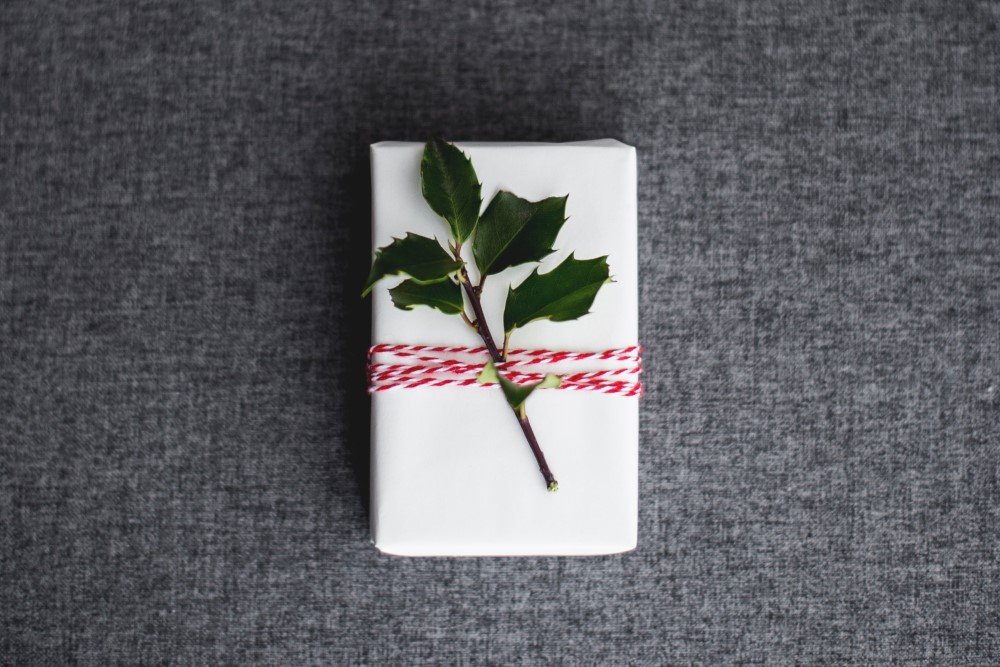 wrapped holiday gift with holly branch and red and white string