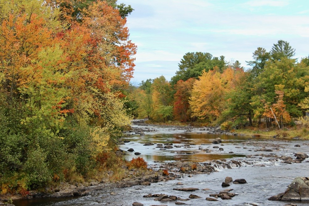 Fall trees near a river in New Hampshire, New England