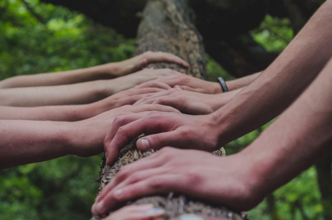 hands of many people on a tree
