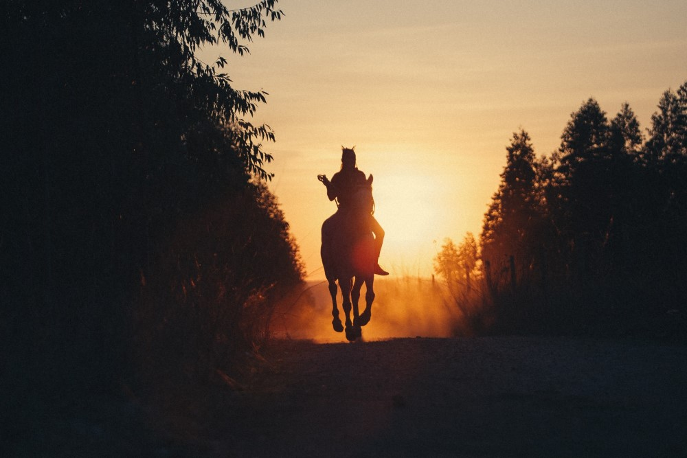 riding a horse in front of the sun