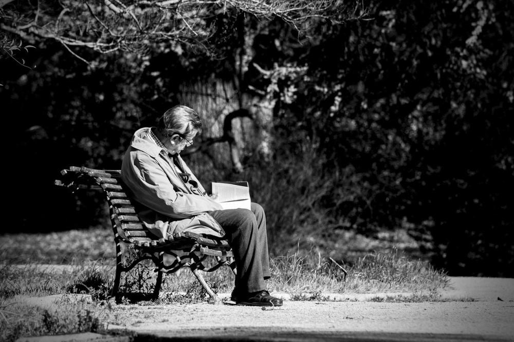 man reading on park bench