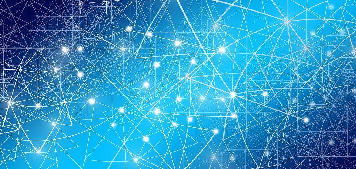 fishnet network