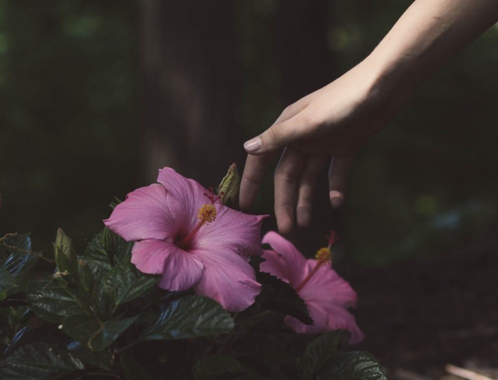 reaching toward flowers